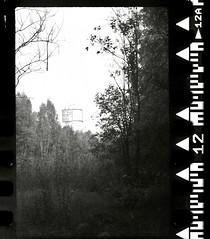 Civilization (film version) (Listenwave Photography) Tags: vista agfa rolleiflexautomat listenwave