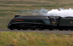 """60009 """"Union of South Africa"""" - Shap Wells (Andrew Edkins) Tags: explore a4class 60009 pacific canon shapwells shap cumbria goldenexpress westcoastmainline wcml unionofsouthafrica railwayphotography pan mainlinesteam dbcargo pathfindertours geotagged light passenger travel trip incline august summer 2018 uksteam"""