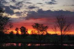 Waiting for the day (pszcz9) Tags: polska poland przyroda nature natura naturaleza wschódsłońca sunrise światło dawn pejzaż landscape drzewo tree woda water beautifulearth sony a77