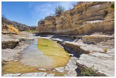 Need More Rain (AnEyeForTexas) Tags: chihuahuandesert comanchecreek bigbendranchstatepark desertlandscapes desert