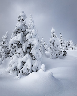 Smithers Winter