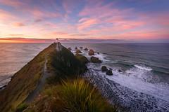 New Beginning (inkasinclair) Tags: nugget point lighthouse new zealand east coast ocean sunrise kaka landscapes waves beach