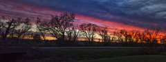 November Panorama (Kansas Poetry (Patrick)) Tags: wetlands arboreum sunset color wild lfk patrickemerson