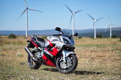 Honda CBR 600f (Casimemato) Tags: motorcycle moto honda cbr cbr600 600f molinos viento eolico naturaleza bokeh 45mm olympus omd em1 clasica deportivo sport ruta turismo mejorenmoto