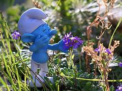 Schlumpf im Garten (ingrid eulenfan) Tags: schlumpf smurf natur nature pflanzen plants makro macro lachen fun