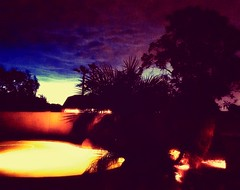 Monsoon Season (Carla Putnam) Tags: storm monsoon monsoonseason stormy stormynight lighteningflash nightsky dark arizonanight arizonasky peoria peoriaaz peoriaarizona az arizona southwestphotography southwest photography arizonaphotography
