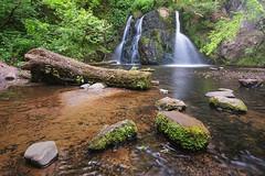 Fairy Glen Falls (Paul C Stokes) Tags: fairy glen falls rosemarkie inverness scotland northcoast500 north coast 500 nc500 nc northcoast sony sonya7r2 a7r2 zeiss1635 zeiss 1635 sel1635z fairyglen fairyglenfalls