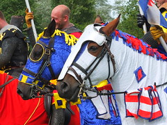 DSCF3900 (SierPinskiA) Tags: ruffordabbeycountrypark rufford knightsofnottingham fujixs1 jousting medieval horse knights goldeneagle falcon