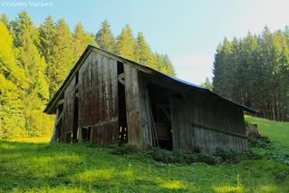 SF_IMG_7897 - Le Lienne, old hayloft, Gruyère region - Switzerland