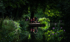 Family Reflections at Cromford Canal.   ( Explored 4.8.18 ) (pitkin9) Tags: canalwalkway canal family summertime foliage flora sunshine lightandshade people reflections