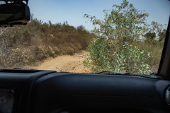 Outback (Dcure) Tags: jeep