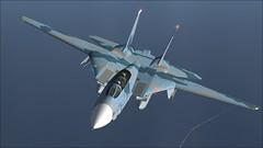ALPHA_001 Tomcat Alley (vmgm0060) Tags: avion grumman dogfight flight fighters fighter flying fsx fs9 f14 f14a f14d f4e usn travel tomcat jolly jet jets military machines
