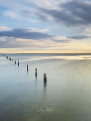 Delta del Ebro,Tarragona (:) vicky) Tags: delta deltadelebro tarragona seda nisi amanecer sunrise abigfave