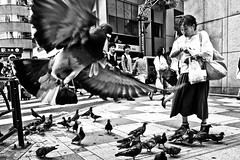 Pigeon Lady (Victor Borst) Tags: street streetphotography streetlife reallife real realpeople asia asian asians faces face candid travel travelling trip traffic traveling urban urbanroots urbanjungle blackandwhite bw mono monotone monochrome tokyo japan japanese pigeons pigeon attack mankind city cityscape citylife