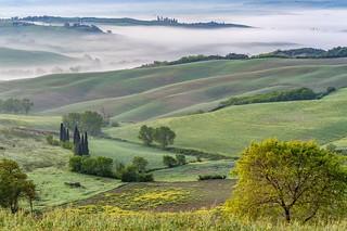 *Toscana Primavera II*