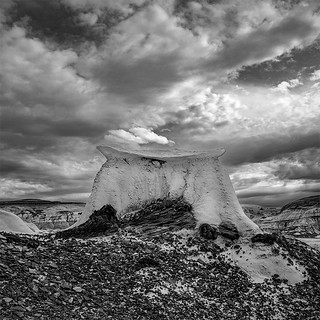 Bisti Badlands (De-Na-Zin Wilderness) - New Mexico