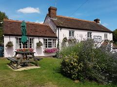 Lunchtime (roger_forster) Tags: royaloak hooksway westsussex pub lunchtime