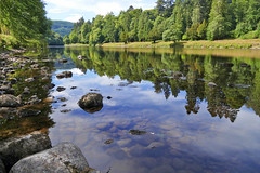 River Tay Reflections (eric robb niven) Tags: ericrobbniven scotland dunkeld landscape rivertay cycling dundee summer