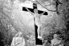 Inri (Infrakrasnyy) Tags: infrared bw 093 deep black white colorless monochrome sony nex 5n full spectrum ireland erie irish tobernalt tober nalt holy well sacred forest grove spiritual