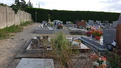 Les herbes au cimetière de Verberie