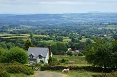 The Shropshire countryside (Explored) (Baz Richardson (now away until 26 Oct)) Tags: shropshire cleehill shropshirehillsareaofoutstandingnaturalbeauty landscapes countryside farmland explored