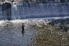 Fly Fishing (guysamsonphoto) Tags: guysamson sonyalpha7rmkiii sony90mmf28macro pêcheur fisherman hdr nikhdrefexpro2 rivière river rivièrenicolet rivièreduquébec victo victoriaville