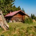Cabin at high forest meadow