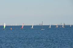 800_4893 (Lox Pix) Tags: queensland qld australia catamaran trimaran hyc humpybongyachtclub winterbash loxpix foilingcatamaran foiling bramblebay sailing race regatta woodypoint boat