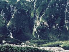 5 stawów-50 (wichrzu_wichrzu) Tags: mountains tatry forest trees pounds stawy 5stawów summer hiking active clearsky