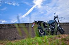 俺 の XSR900 - 15 (Cheng-Xun Yang) Tags: xsr900 yamaha xsr mtm850 バイク ヤマハ motorcycles