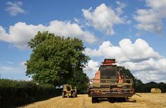 Harvest near Plymtree