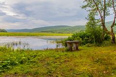 Bench By The Basha Kill (John Kocijanski) Tags: bench hbm landscape bashakill water wetlands sullivancounty summer canon24105mmf4l canon5dmkii