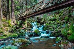 Ravennaschlucht (MelaHa) Tags: schwarzwald blackforest ravennaschlucht natur landschaft landscape badenwürttemberg