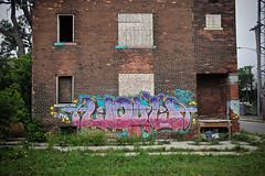 Liquid (piecesofdetroit) Tags: detroitgraffiti detroit graffiti street art streetart graffitiart graffitiwriters motorcity piecesofdetroit germanfriday friday killthematador thegermanfriday liquid riskingeverychance istayhigh