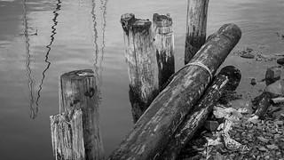 old dock pilings, sailboat mast reflections, harbor, Rockland, Maine, Panasonic Lumix FZ200, 8.9.18