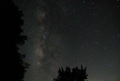 DSC_3108 (_andy_chung_) Tags: 車宿 塔塔加 上東埔 日出 英仙座流星雨 201808 武嶺 合歡山 星空 meteor 阿里山 新中橫 台21 台18 14甲 銀河 光軌