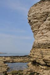 Flamborough rock pools 3 (Jo Rawson!) Tags: yorkshirecoast yorkshire seaside sea coast rockpools