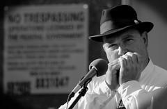 Truman's Ridge, Sycamore. 8 (EOS) (Mega-Magpie) Tags: canon eos 60d outdoors live bluegrass music trumans ridge sycamore public library musicians bw black white mono monochrome people person guy man dude fella il illinois usa america