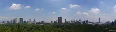 Skyline Polanco