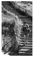 Walking up... (LukeDaDuke) Tags: zandvoort dune beach strand duin bnw blackandwhite noordholland streetphotography streetlife beachlife