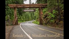 Mount Rainier National Park | Ep. 3 (Nature1844 Photography) Tags: mountrainiernationalpark eastsidetrail woodland forest waterfall footbridge springmelt