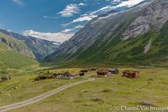 Jostedalsbreen (Chantal van Breugel) Tags: landschap noorwegen jostedalsbreen bergen juli 2018 canon5dmark111 canon1635