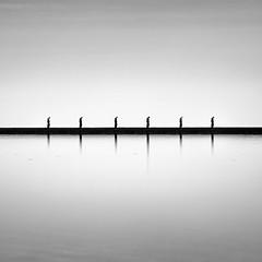 deja vu (stocks photography.) Tags: photographer michaelmarsh whitstable dejavu tankerton photography coast seaside blackwhite bw