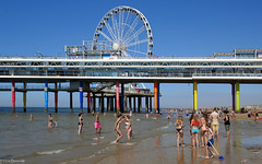 Scheveningen: hot day on the beach (Henk Binnendijk) Tags: pier piervanscheveningen beach strand denhaag thehague nederland netherlands holland dutch scheveningen people sea zee candid badgasten reuzenrad ferriswheel sunbathing zwemmen swimming