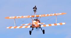 Stearman of The Flying Circus Wingwalking Team (rac819) Tags: oldwarden shuttleworthcollection shuttleworthtrust ukairdisplays family display stearman wingwalking flyingcircus