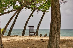 (fabhuleux) Tags: nature voyage travel france antilles martinique 1d canon sable chaise chair plage soleil mer sea sun beach