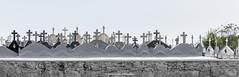 Crosses (Ignacio Ferre) Tags: oia galicia españa spain panorama cruces crosses cementerio nikon tumba cemetery graveyard tomb grave