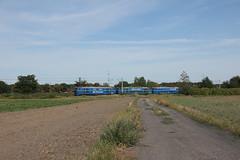 20180812 0016 (szogun000) Tags: wrocław poland polska railroad railway rail pkp mainline engine locomotive lokomotywa локомотив lokomotive locomotiva locomotora electric elektrowóz et22 et221099 et22644 et22959 pkpcargo d29275 e30 dolnośląskie dolnyśląsk lowersilesia canon canoneos550d canonefs18135mmf3556is