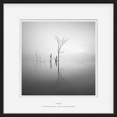 deluge (Teo Kefalopoulos - Art Photography) Tags: