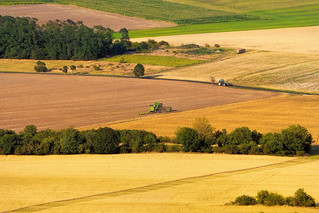 Modern harvest time
